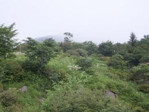 2014-07-27_赤薙山 0034