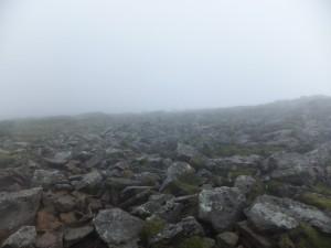 2014-08-9_16_二ペソツ山・石狩岳・オプタテシケ山 0131