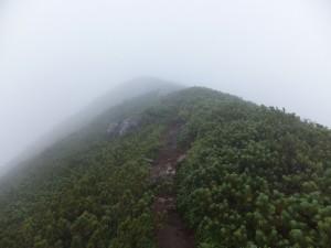 2014-08-9_16_二ペソツ山・石狩岳・オプタテシケ山 0134