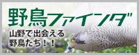 野鳥ファインダー